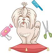 Dog grooming Stock Photo Images. 9,843 dog grooming ...
