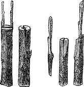 Reproduction Clipart Illustrations. 2,595 reproduction ...