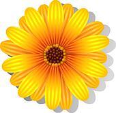 Clip Art Daisy Clip Art daisy clip art illustrations 18897 clipart eps vector gerber flower
