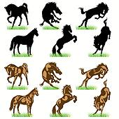 Horse head Clip Art Illustrations. 3,758 horse head clipart EPS ...