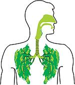Air breathing Clip Art EPS Images. 725 air breathing clipart ...
